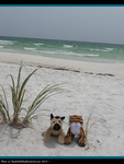 .: Beach Bums :. by Dunkin-Prime