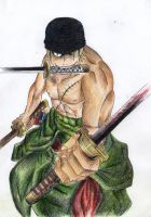 Roronoa Zoro by PrincessPokemon