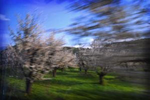 on the go 2 by giorgos6