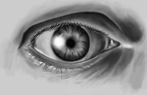 Photorealistic Eye by ErikaDavies