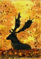 Deer in the forest by polinaart1