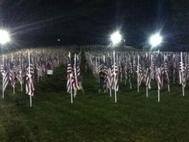 Healing Field 4 by wittlecabbage