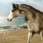 Riptide by VIP-EquineArt