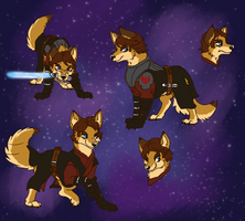 Anakin dog ref by Rap-Monstah