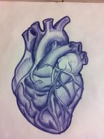 Anatomical Heart Tattoo by TricomiArt