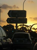 Road signs by luisilustra