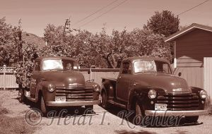 Vintage Tree Service 2013-05-30-s2-007 by 12monthsOFwinter
