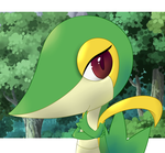 Silly Snivy by MrBarthalamul