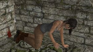 TR 2013 How to secure Lara 03 by honkus2