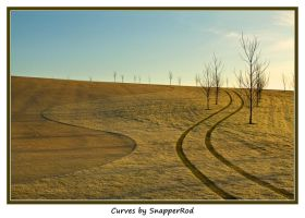 Curves by SnapperRod