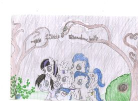 My team shadowbolts by pegasister333