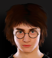 Harry Potter - Year 4 by ArchXAngel20