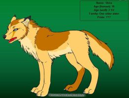 Shira Wolf Character by lilly-gerbil