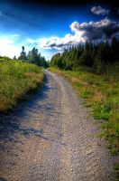 Off the beaten Path HDR XVIII by Witch-Dr-Tim