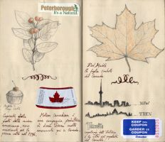 Travel book from Canada 03 by Panaiotis