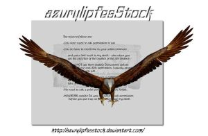 3D object - eagle3 by AzurylipfesStock