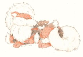 Arcanine and eevee by PatCookieParty