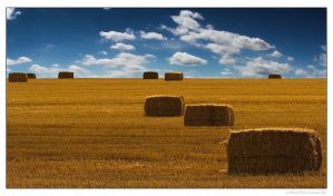 Hay Bale 04 by miki3d