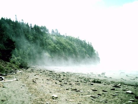 Hopewell Rocks Beach Mist by Collecting-Stocks