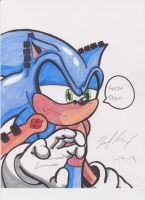 Sonic: Know Pain by 1BetaOne