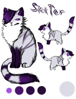 *OLD* SickTer's (rushed) ref. (fursona) by MeowingGrave