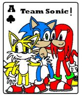 Ace Of Team Sonic by leia12345