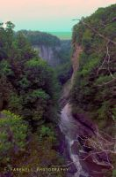 Taughannock Falls NY by EmersonStem