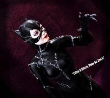 Catwoman V2 1/6 scale action figure by Sean-Dabbs-fx