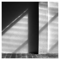 shadows by ine87