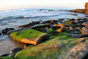 Mossy sea rocks at sunset by fosspathei