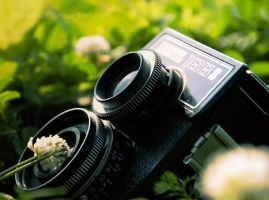old camera by Grettiena