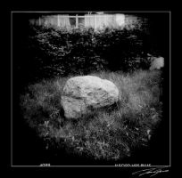 holga rock by electricjonny