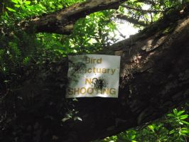 Lets shoot the 'no shooting' sign by D1scipl31974
