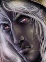Drizzt no2 by Kseronarogu