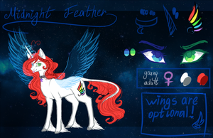 Midnight Feather's Reference  [WIP] by kseniyart