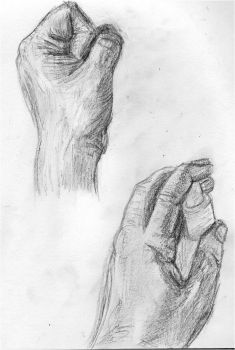 Hand Study by reflection13