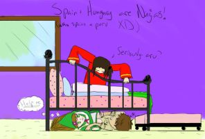APH: Spain+Hungary are ninjas by xxcheesexgeniusxx