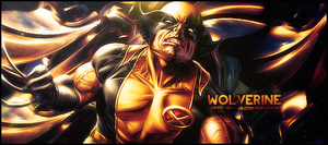 Wolverine by Nushulica
