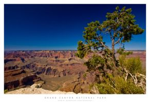 Grand Canyon by gabba74