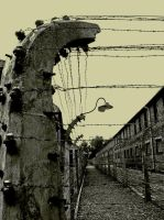 Auschwitz by CommercianteDiMaiali
