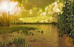 The Marshes by montag451