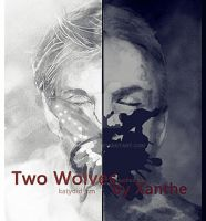 NCIS-Two Wolves By Xanthe by LUOHUACHA
