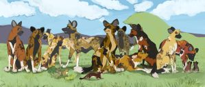 Wild Dogs A-Plenty by Paiden