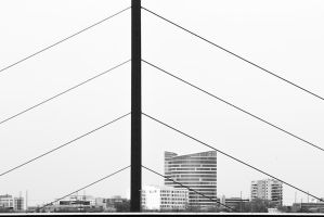 strings by schnotte