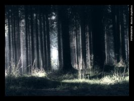 Mysterious place by mjagiellicz
