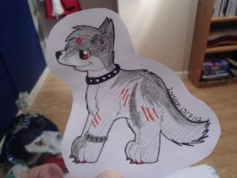 Scar badge for Wolves May Cry by Lockian