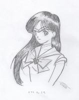 Sailor Mars: Yeah I watched... by jsos