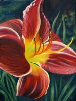 Improved Maroon Daylily II by TernFeather