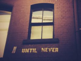 Until Never by RiseToTheWake