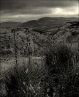 The Sperrin Mountains by younghappy